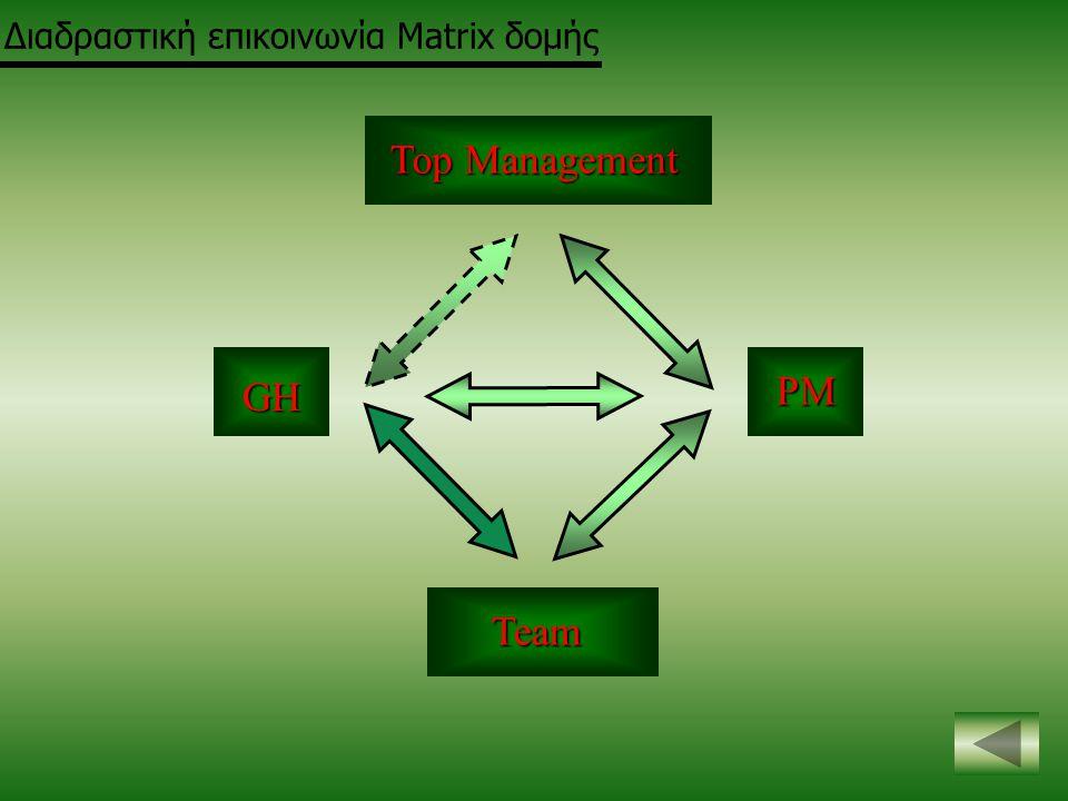 Top Management Team GH PM Διαδραστική επικοινωνία Matrix δομής