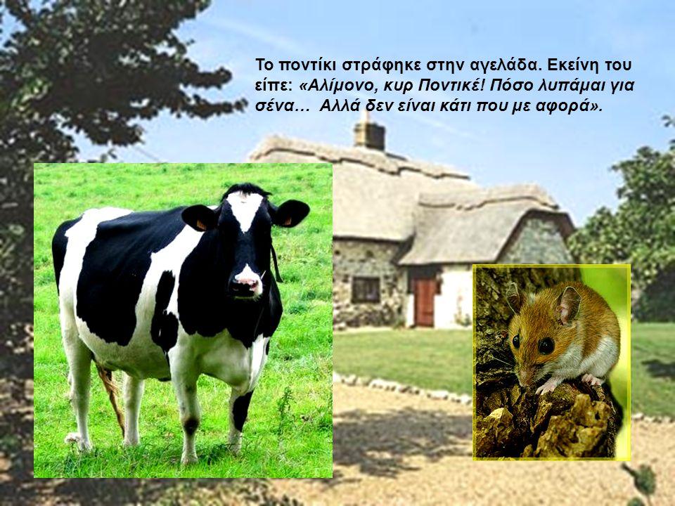 Το ποντίκι στράφηκε στην αγελάδα. Εκείνη του είπε: «Αλίμονο, κυρ Ποντικέ! Πόσο λυπάμαι για σένα… Αλλά δεν είναι κάτι που με αφορά».
