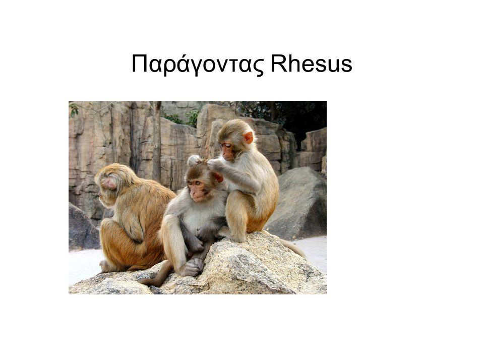 Παράγοντας Rhesus