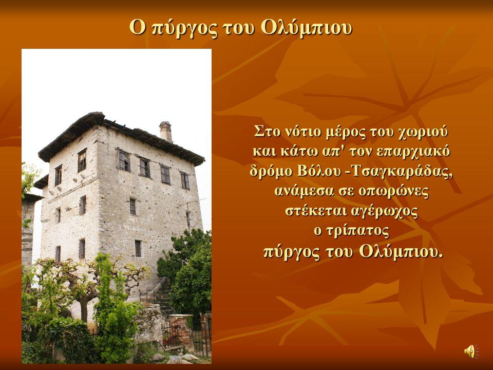 Στο νότιο μέρος του χωριού και κάτω απ' τον επαρχιακό δρόμο Βόλου -Τσαγκαράδας, ανάμεσα σε οπωρώνες στέκεται αγέρωχος ο τρίπατος πύργος του Ολύμπιου.