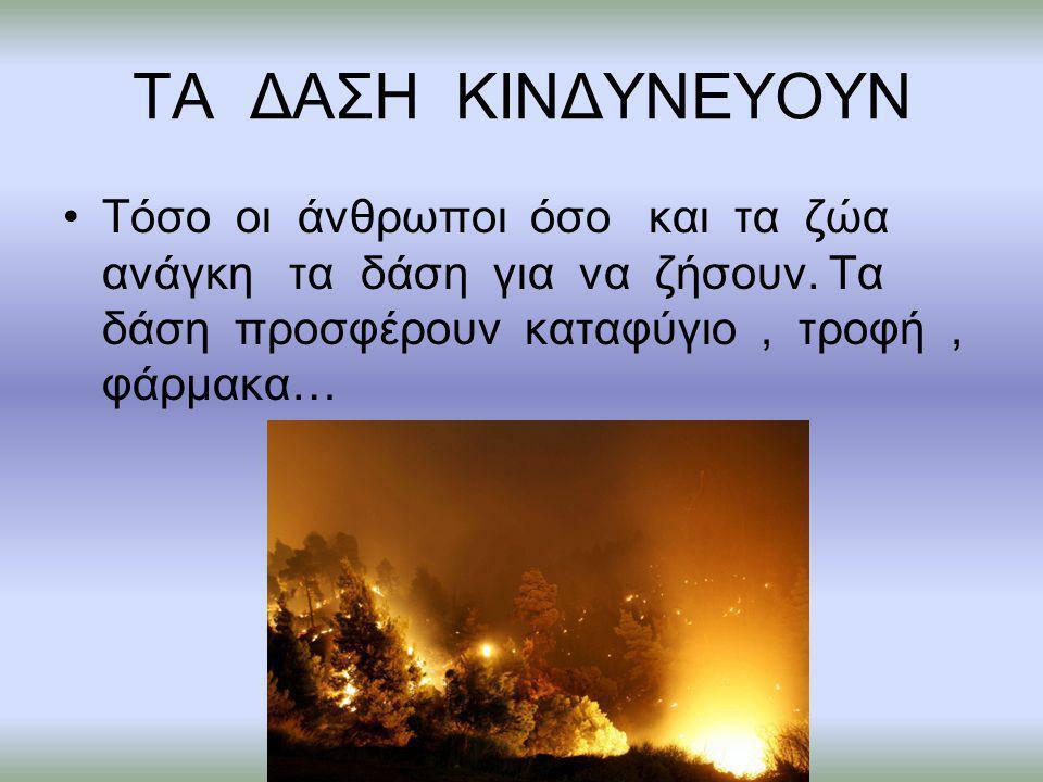 ΤΕΛΟΣ Έτσι μάθαμε ότι δεν πρέπει να μολύνουμε την φύση ούτε τα ζώα!!!!!!!!!!!!!!!!!!!!!!!!!!!!!!!!!