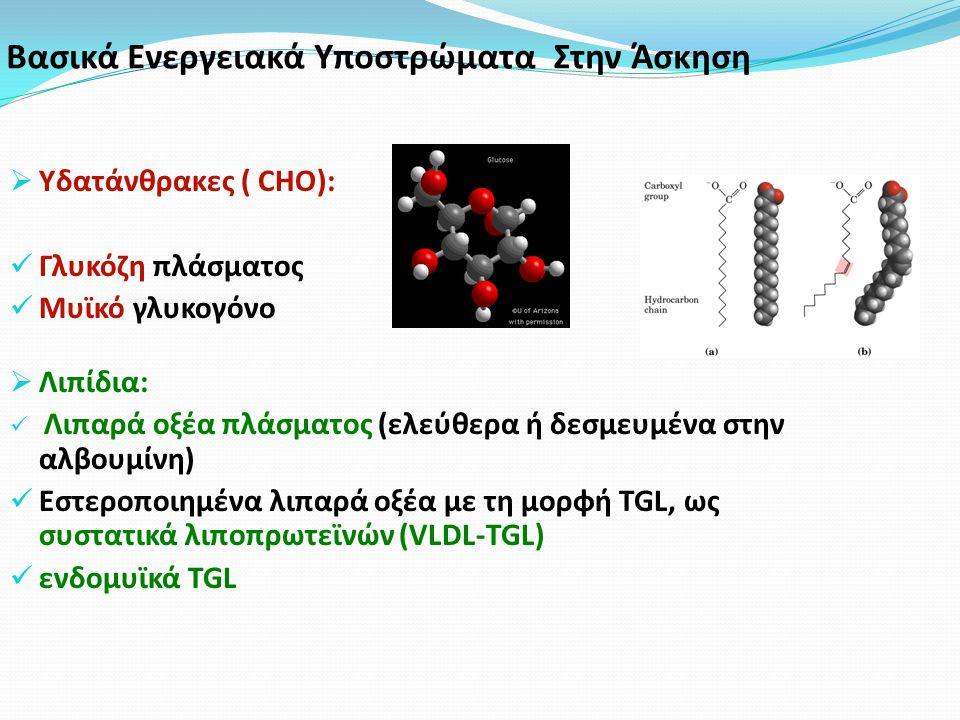Βασικά Ενεργειακά Υποστρώματα Στην Άσκηση  Υδατάνθρακες ( CHO): Γλυκόζη πλάσματος Μυϊκό γλυκογόνο  Λιπίδια: Λιπαρά οξέα πλάσματος (ελεύθερα ή δεσμευμένα στην αλβουμίνη) Εστεροποιημένα λιπαρά οξέα με τη μορφή TGL, ως συστατικά λιποπρωτεϊνών (VLDL-TGL) ενδομυϊκά TGL