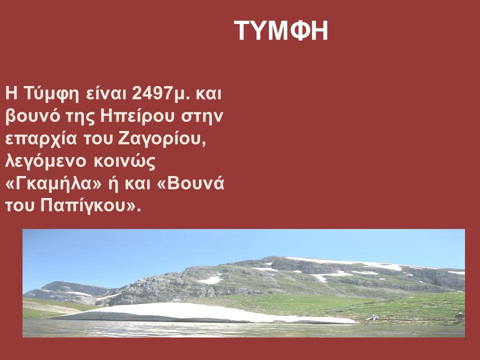 ΤΥΜΦΗ Η Τύμφη είναι 2497μ. και βουνό της Ηπείρου στην επαρχία του Ζαγορίου, λεγόμενο κοινώς «Γκαμήλα» ή και «Βουνά του Παπίγκου».