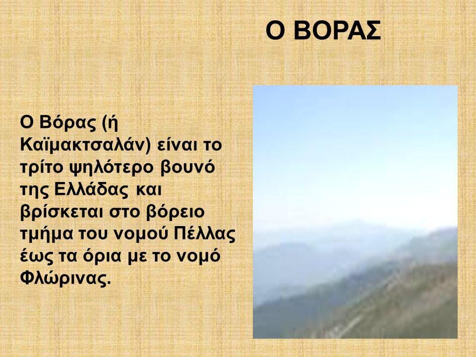 O ΒΟΡΑΣ Ο Βόρας (ή Καϊμακτσαλάν) είναι το τρίτο ψηλότερο βουνό της Ελλάδας και βρίσκεται στο βόρειο τμήμα του νομού Πέλλας έως τα όρια με το νομό Φλώρ