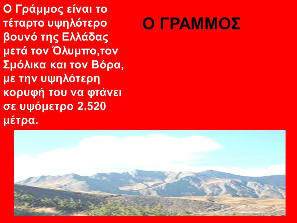 Ο ΓΡΑΜΜΟΣ Ο Γράμμος είναι το τέταρτο υψηλότερο βουνό της Ελλάδας μετά τον Όλυμπο,τον Σμόλικα και τον Βόρα, με την υψηλότερη κορυφή του να φτάνει σε υψ