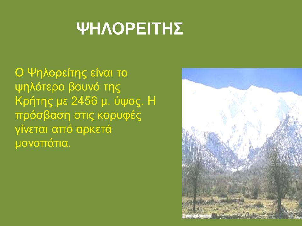 ΨΗΛΟΡΕΙΤΗΣ Ο Ψηλορείτης είναι το ψηλότερο βουνό της Κρήτης με 2456 μ. ύψος. Η πρόσβαση στις κορυφές γίνεται από αρκετά μονοπάτια.