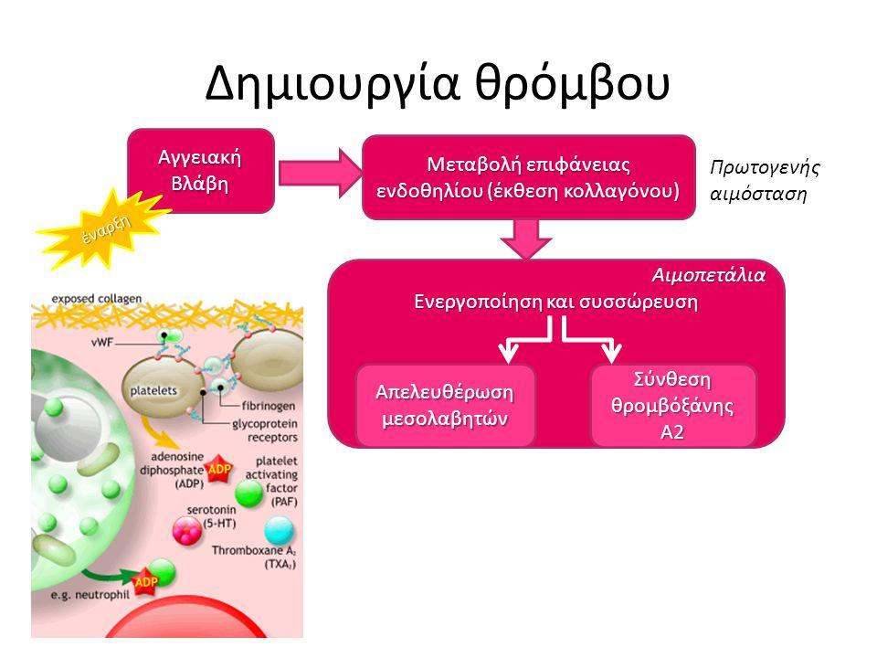 Δημιουργία θρόμβου Αγγειακή Βλάβη Μεταβολή επιφάνειας ενδοθηλίου (έκθεση κολλαγόνου) Αιμοπετάλια Ενεργοποίηση και συσσώρευση Απελευθέρωση μεσολαβητών