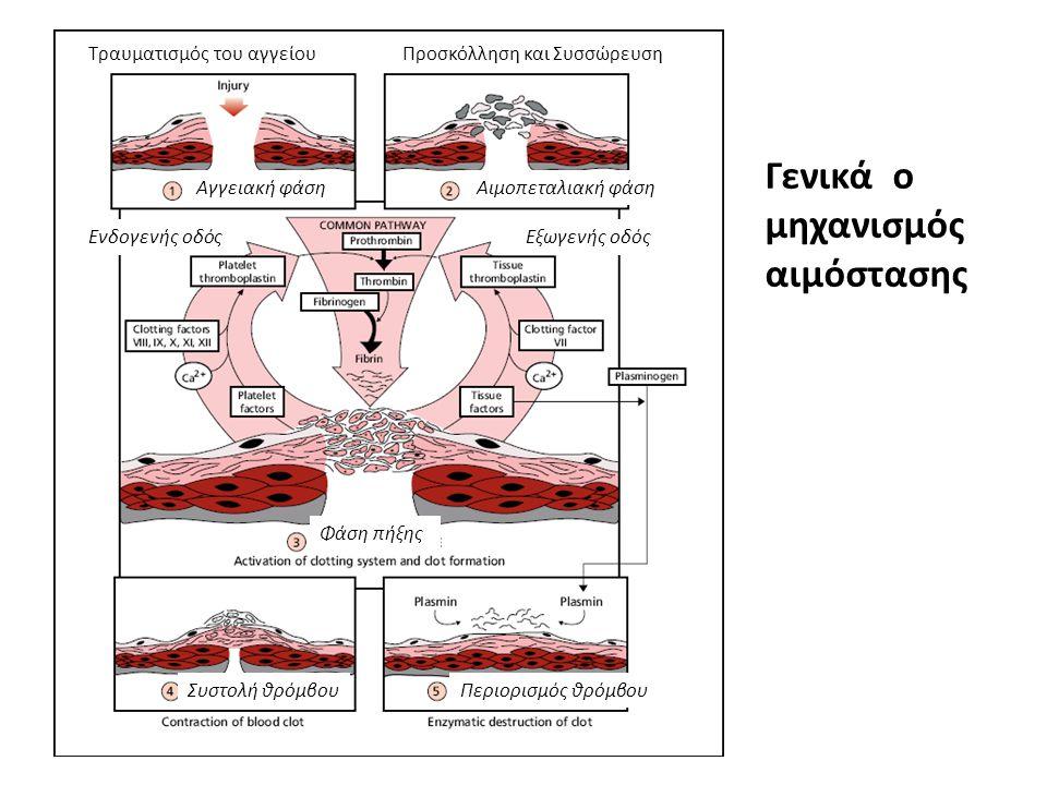 Γενικά ο μηχανισμός αιμόστασης Τραυματισμός του αγγείουΠροσκόλληση και Συσσώρευση Ενδογενής οδόςΕξωγενής οδός Αγγειακή φάσηΑιμοπεταλιακή φάση Φάση πήξ