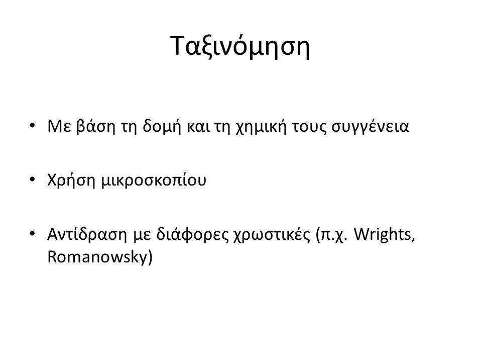 Ταξινόμηση Με βάση τη δομή και τη χημική τους συγγένεια Χρήση μικροσκοπίου Αντίδραση με διάφορες χρωστικές (π.χ. Wrights, Romanowsky)