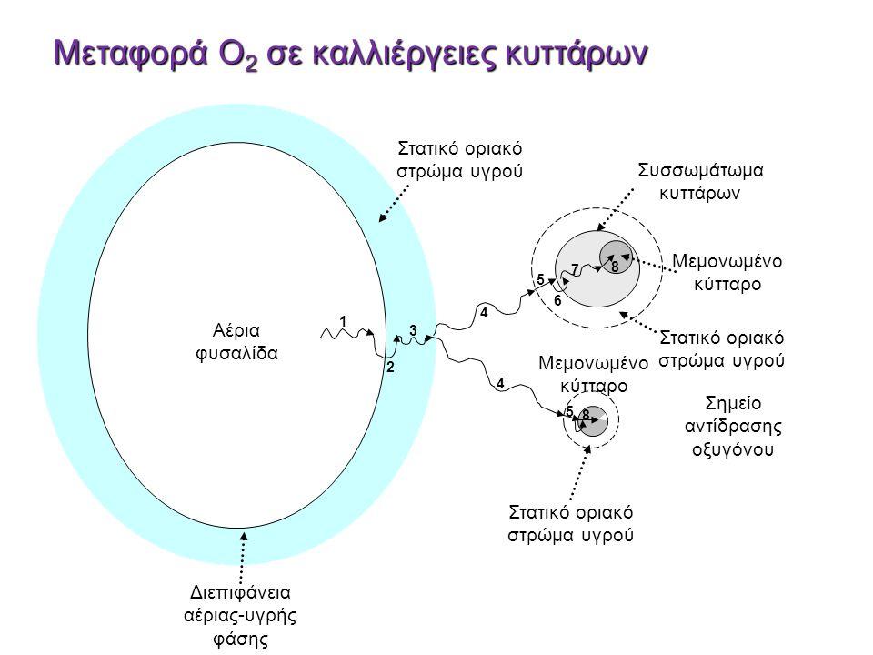 v Αέρια φυσαλίδα Διεπιφάνεια αέριας-υγρής φάσης Στατικό οριακό στρώμα υγρού Μεμονωμένο κύτταρο Στατικό οριακό στρώμα υγρού Σημείο αντίδρασης οξυγόνου