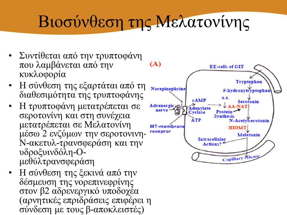 Βιοσύνθεση της Μελατονίνης Συντίθεται από την τρυπτοφάνη που λαμβάνεται από την κυκλοφορία Η σύνθεση της εξαρτάται από την διαθεσιμότητα της τρυπτοφάν