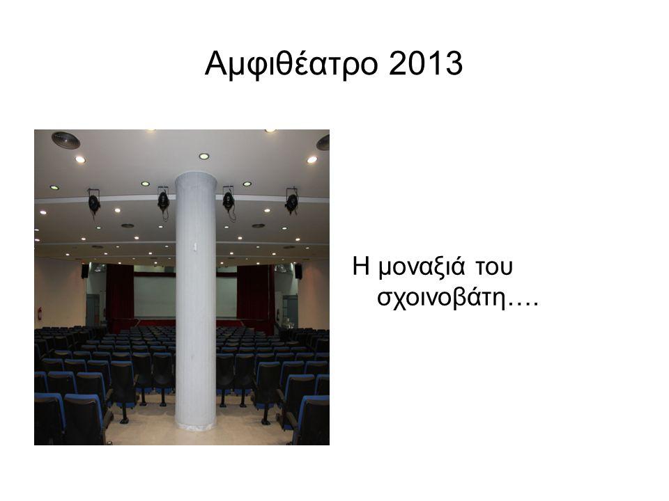 Αμφιθέατρο 2013 Η μοναξιά του σχοινοβάτη….
