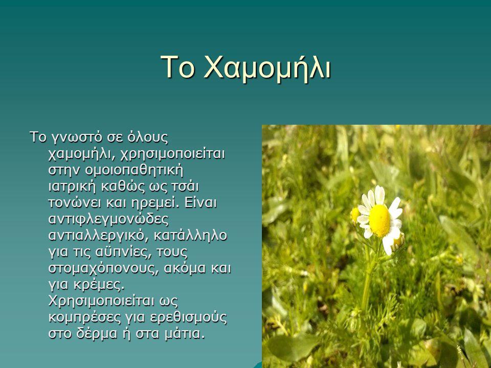 Το Χαμομήλι Το γνωστό σε όλους χαμομήλι, χρησιμοποιείται στην ομοιοπαθητική ιατρική καθώς ως τσάι τονώνει και ηρεμεί. Είναι αντιφλεγμονώδες αντιαλλεργ