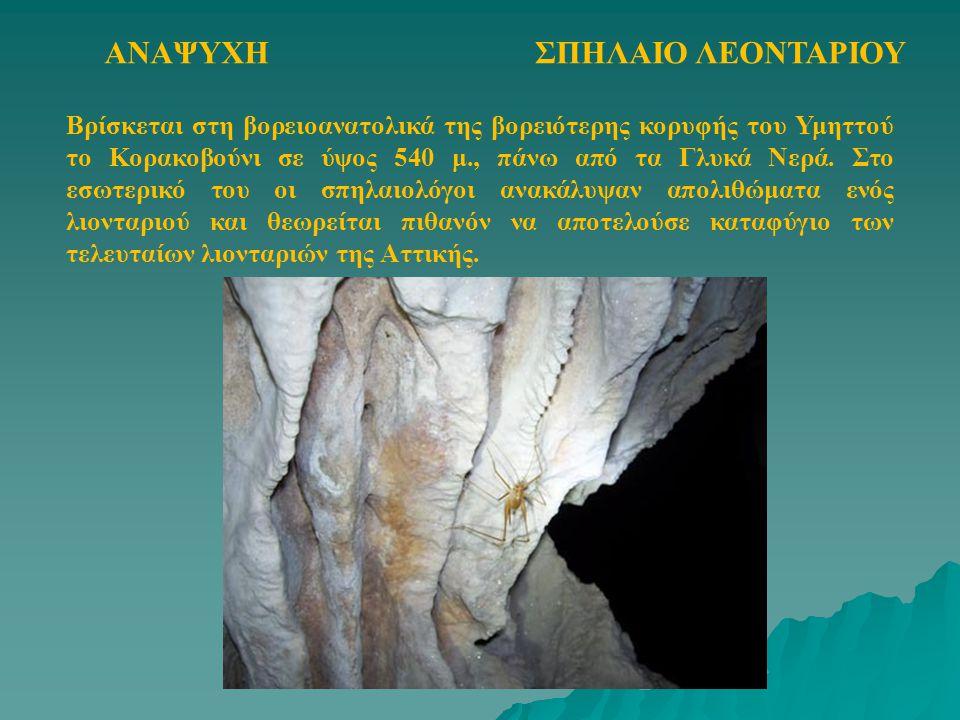 ΣΠΗΛΑΙΟ ΛΕΟΝΤΑΡΙΟΥΑΝΑΨΥΧΗ Βρίσκεται στη βορειοανατολικά της βορειότερης κορυφής του Υμηττού το Κορακοβούνι σε ύψος 540 μ., πάνω από τα Γλυκά Νερά. Στο