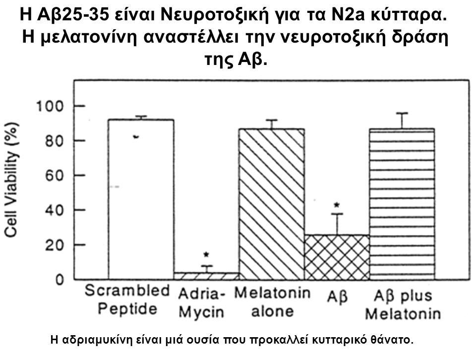Η Αβ25-35 είναι Νευροτοξική για τα N2a κύτταρα. Η μελατονίνη αναστέλλει την νευροτοξική δράση της Αβ. Η αδριαμυκίνη είναι μιά ουσία που προκαλλεί κυττ