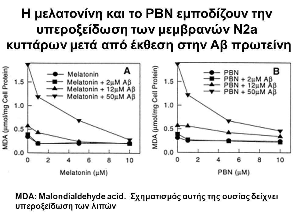 Η μελατονίνη και το PBN εμποδίζουν την υπεροξείδωση των μεμβρανών N2a κυττάρων μετά από έκθεση στην Αβ πρωτείνη MDA: Malondialdehyde acid. Σχηματισμός