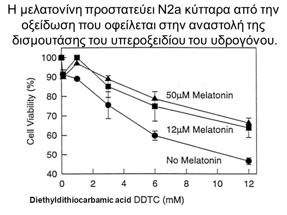 Η μελατονίνη προστατεύει N2a κύτταρα από την οξείδωση που οφείλεται στην αναστολή της δισμουτάσης του υπεροξειδίου του υδρογόνου. Diethyldithiocarbami