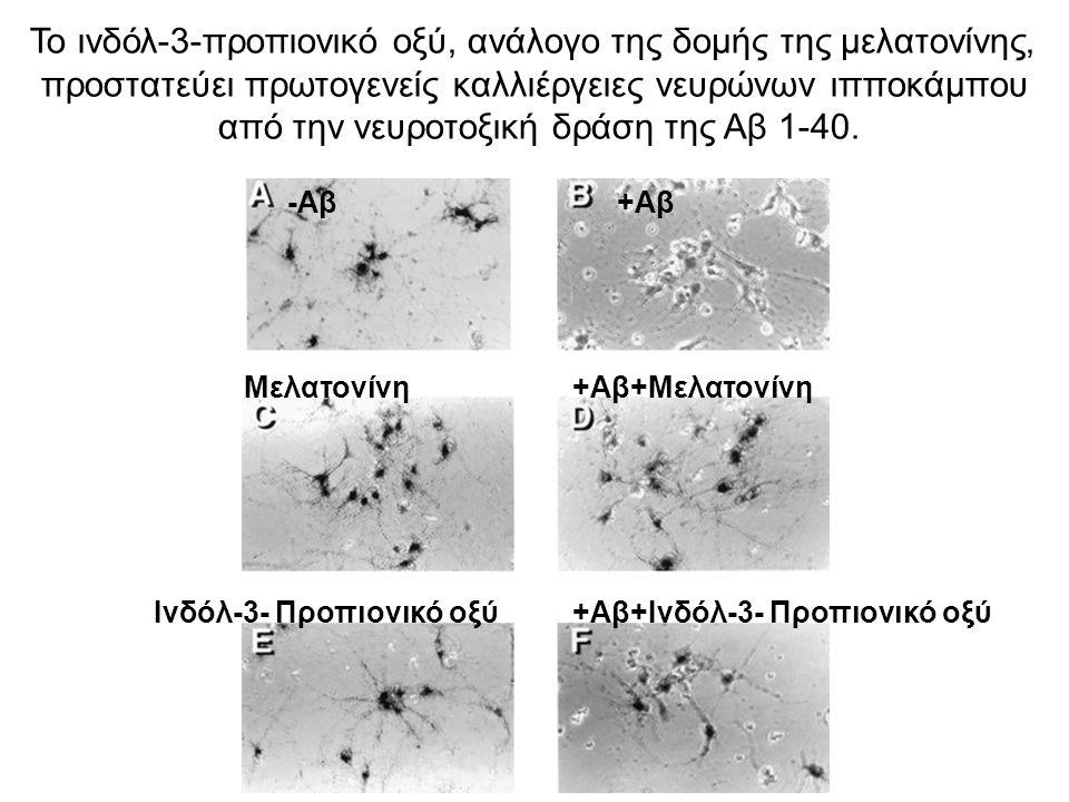 Το ινδόλ-3-προπιονικό οξύ, ανάλογο της δομής της μελατονίνης, προστατεύει πρωτογενείς καλλιέργειες νευρώνων ιπποκάμπου από την νευροτοξική δράση της Α