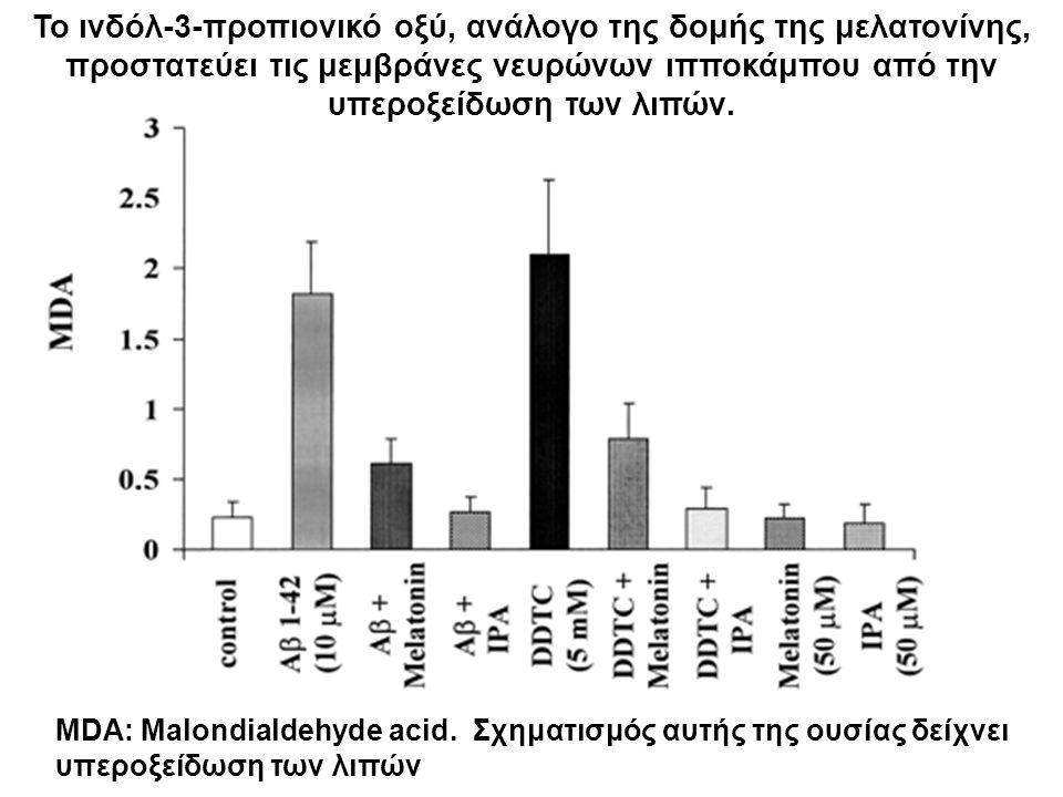 Το ινδόλ-3-προπιονικό οξύ, ανάλογο της δομής της μελατονίνης, προστατεύει τις μεμβράνες νευρώνων ιπποκάμπου από την υπεροξείδωση των λιπών. MDA: Malon