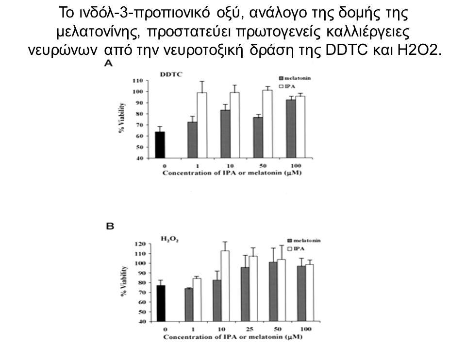 Το ινδόλ-3-προπιονικό οξύ, ανάλογο της δομής της μελατονίνης, προστατεύει πρωτογενείς καλλιέργειες νευρώνων από την νευροτοξική δράση της DDTC και Η2Ο