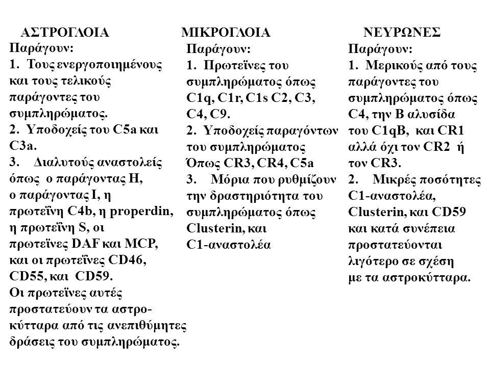 ΑΣΤΡΟΓΛΟΙΑ ΜΙΚΡΟΓΛΟΙΑΝΕΥΡΩΝΕΣ Παράγουν: 1. Τους ενεργοποιημένους και τους τελικούς παράγοντες του συμπληρώματος. 2. Υποδοχείς του C5a και C3a. 3.Διαλυ
