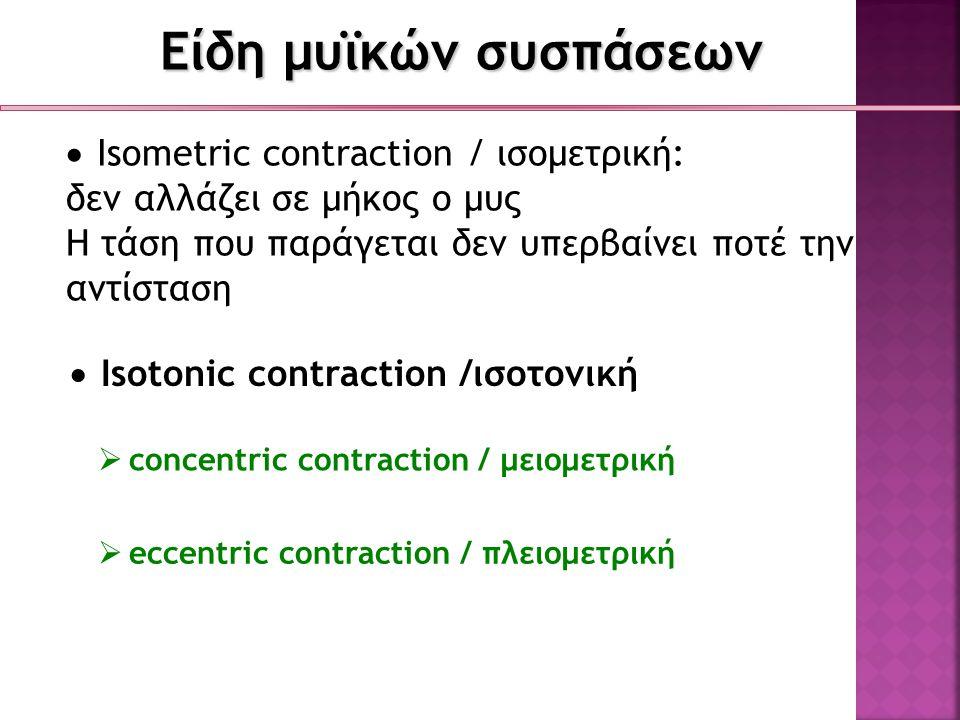 Είδη μυϊκών συσπάσεων  Isometric contraction / ισομετρική: δεν αλλάζει σε μήκος ο μυς Η τάση που παράγεται δεν υπερβαίνει ποτέ την αντίσταση  Isoton