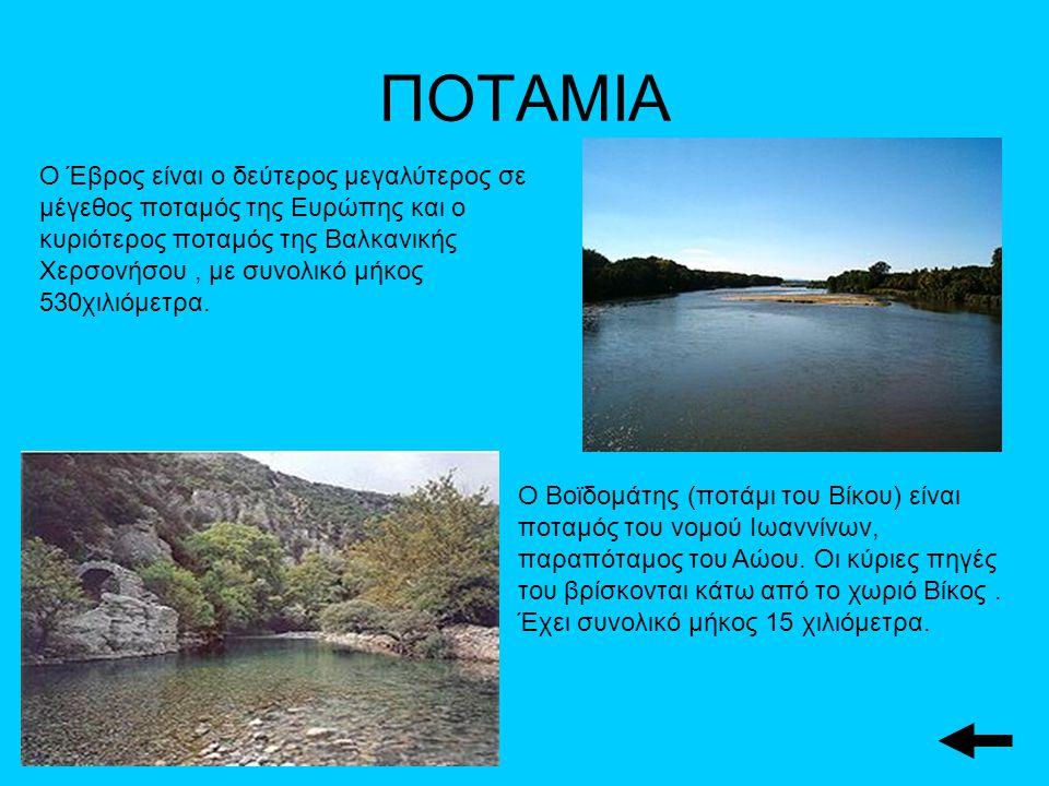 ΠΟΤΑΜΙΑ Ο Έβρος είναι ο δεύτερος μεγαλύτερος σε μέγεθος ποταμός της Ευρώπης και ο κυριότερος ποταμός της Βαλκανικής Χερσονήσου, με συνολικό μήκος 530χιλιόμετρα.