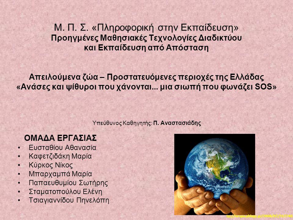2η Τηλεδιάσκεψη Δραστηριότητες 3η Δραστηριότητα «Ένα σύγχρονο μήνυμα για το μελλοντικό κόσμο» Προβολή Βίντεο Respire Respire (φύλλο εργασίας)φύλλο εργασίας  Συζήτηση: Οπτικός αλφαβητισμός Αναδόμηση του περιεχομένου Συναισθηματική κινητοποίηση των μαθητών  Συμπλήρωση προτάσεων – Συσχέτιση με το πρώτο κείμενο: Τα λόγια Του Σιάτλ:« Τι είναι ο άνθρωπος χωρίς τα ζώα; Αν όλα τα ζώα φύγουν απ' τη μέση, ο άνθρωπος θα πεθάνει από μεγάλη εσωτερική μοναξιά.» Τι θα απαντούσε η πωταγωνίστρια στο ερώτημα που διερευνούμε; Ζωγραφική – παιχνίδι σκιών