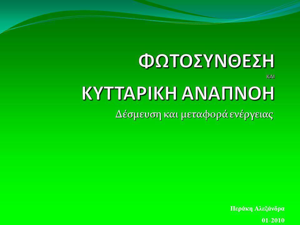 Δέσμευση και μεταφορά ενέργειας Περάκη Αλεξάνδρα 01-2010