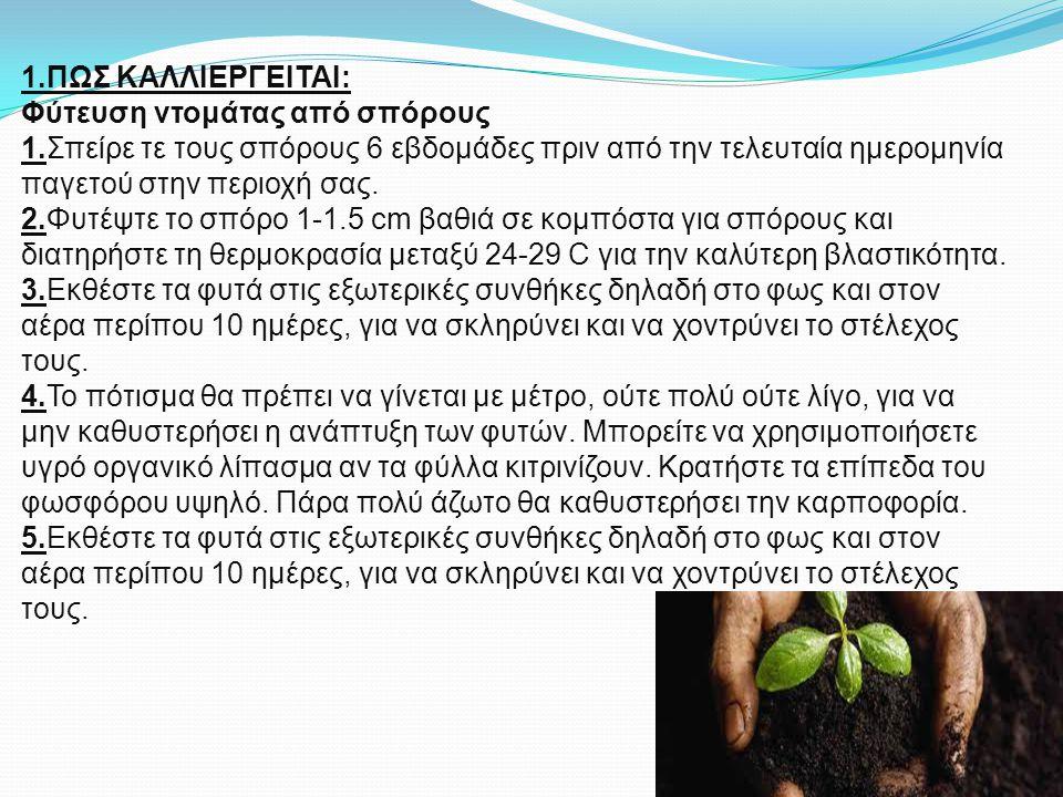 1.ΠΩΣ ΚΑΛΛΙΕΡΓΕΙΤΑΙ: Φύτευση ντομάτας από σπόρους 1.Σπείρε τε τους σπόρους 6 εβδομάδες πριν από την τελευταία ημερομηνία παγετού στην περιοχή σας. 2.Φ
