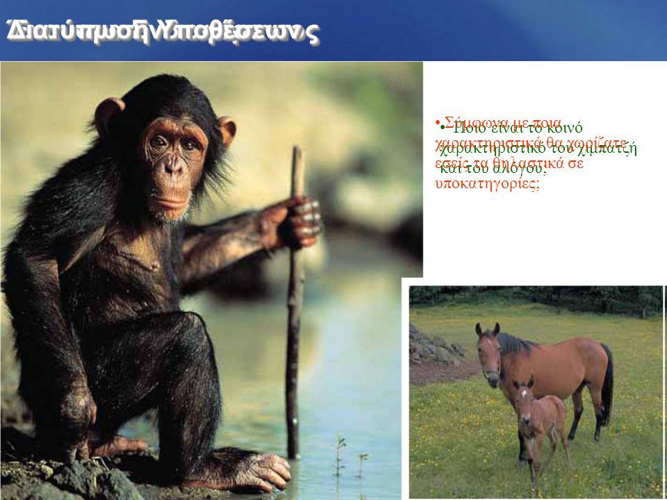 Έναυσμα Ενδιαφέροντος Διατύπωση Υποθέσεων Ποιο είναι το κοινό χαρακτηριστικό του χιμπατζή και του αλόγου; Σύμφωνα με ποια χαρακτηριστικά θα χωρίζατε εσείς τα θηλαστικά σε υποκατηγορίες;