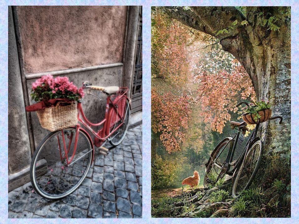 Το ποδήλατο στην πόλη μας Είναι γεγονός αδιαμφισβήτητο ότι το ποδήλατο αντιπροσωπεύει τον πιο φιλικό τρόπο μετακίνησης.