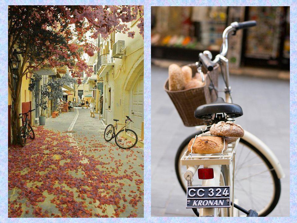 Η πόλη της Καρδίτσας, σύμφωνα με στοιχεία της Αναπτυξιακής Καρδίτσας, αποτελεί χαρακτηριστική περίπτωση πόλης μικρού μεγέθους, στην οποία το ποδήλατο αποτελεί καθημερινό μέσο μετακίνησης και χρησιμοποιείται από όλες τις ηλικίες και κοινωνικές ομάδες.
