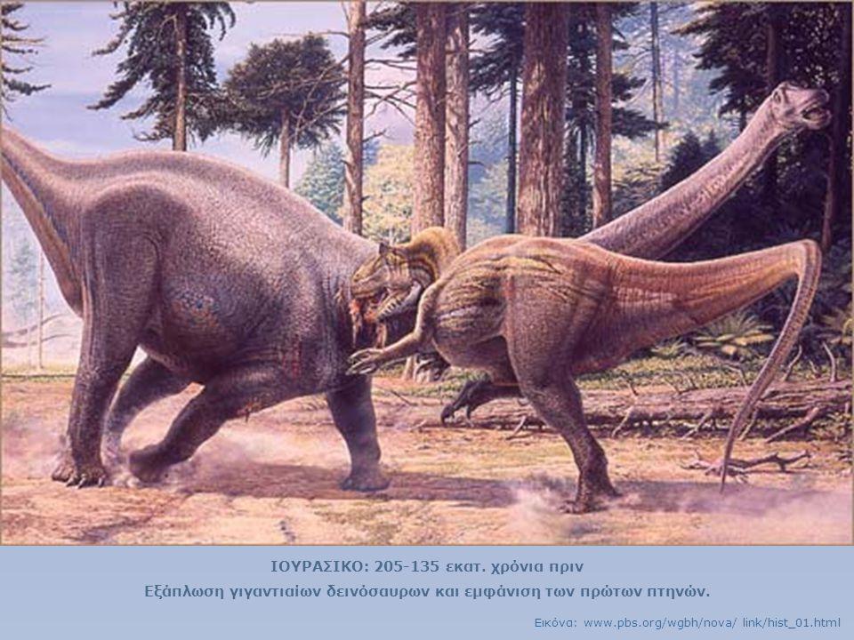ΙΟΥΡΑΣΙΚΟ: 205-135 εκατ. χρόνια πριν Εξάπλωση γιγαντιαίων δεινόσαυρων και εμφάνιση των πρώτων πτηνών. Εικόνα: www.pbs.org/wgbh/nova/ link/hist_01.html