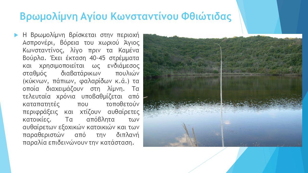 Βρωμολίμνη Αγίου Κωνσταντίνου Φθιώτιδας  Η Βρωμολίμνη βρίσκεται στην περιοχή Ασπρονέρι, βόρεια του χωριού Άγιος Κωνσταντίνος, λίγο πριν τα Καμένα Βού