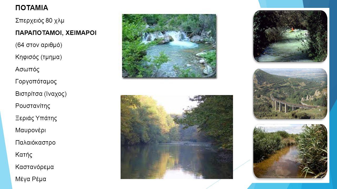 Υδροβιότοπος Σκαρφείας Περίπου 2,5 Km βορείως της Σκάρφειας βρίσκεται ο υδρο-βιότοπος.