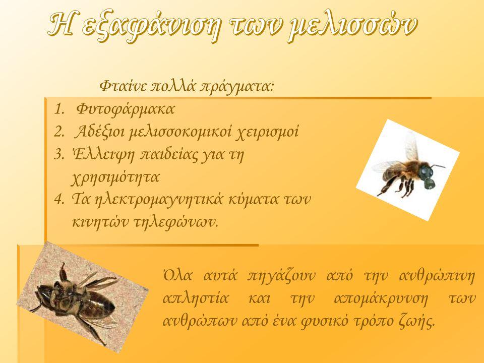 Φταίνε πολλά πράγματα: 1. Φυτοφάρμακα 2. Αδέξιοι μελισσοκομικοί χειρισμοί 3.Έλλειψη παιδείας για τη χρησιμότητα 4.Τα ηλεκτρομαγνητικά κύματα των κινητ