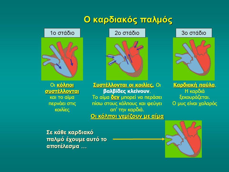 Η δομή της καρδιάς Δεξιός κόλπος Αριστερός κόλπος βαλβίδα Δεξιά κοιλία Αριστερή κοιλία