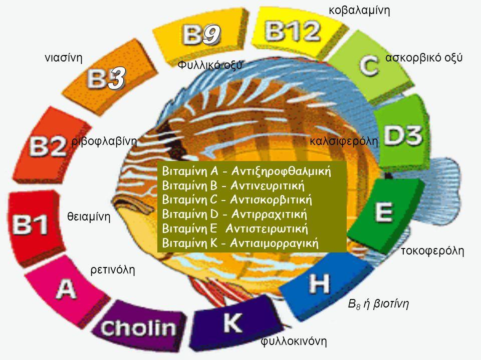 φυλλοκινόνη ρετινόλη θειαμίνη ριβοφλαβίνη νιασίνη Φυλλικό οξύ κοβαλαμίνη τοκοφερόλη καλσιφερόλη ασκορβικό οξύ Β 8 ή βιοτίνη Βιταμίνη Α - Αντιξηροφθαλμ