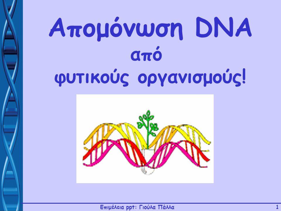 Επιμέλεια ppt: Γιούλα Πάλλα1 Απομόνωση DNA από φυτικούς οργανισμούς!