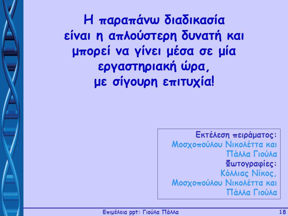 Επιμέλεια ppt: Γιούλα Πάλλα18 Εκτέλεση πειράματος: Μοσχοπούλου Νικολέττα και Πάλλα Γιούλα Φωτογραφίες: Κόλλιας Νίκος, Μοσχοπούλου Νικολέττα και Πάλλα