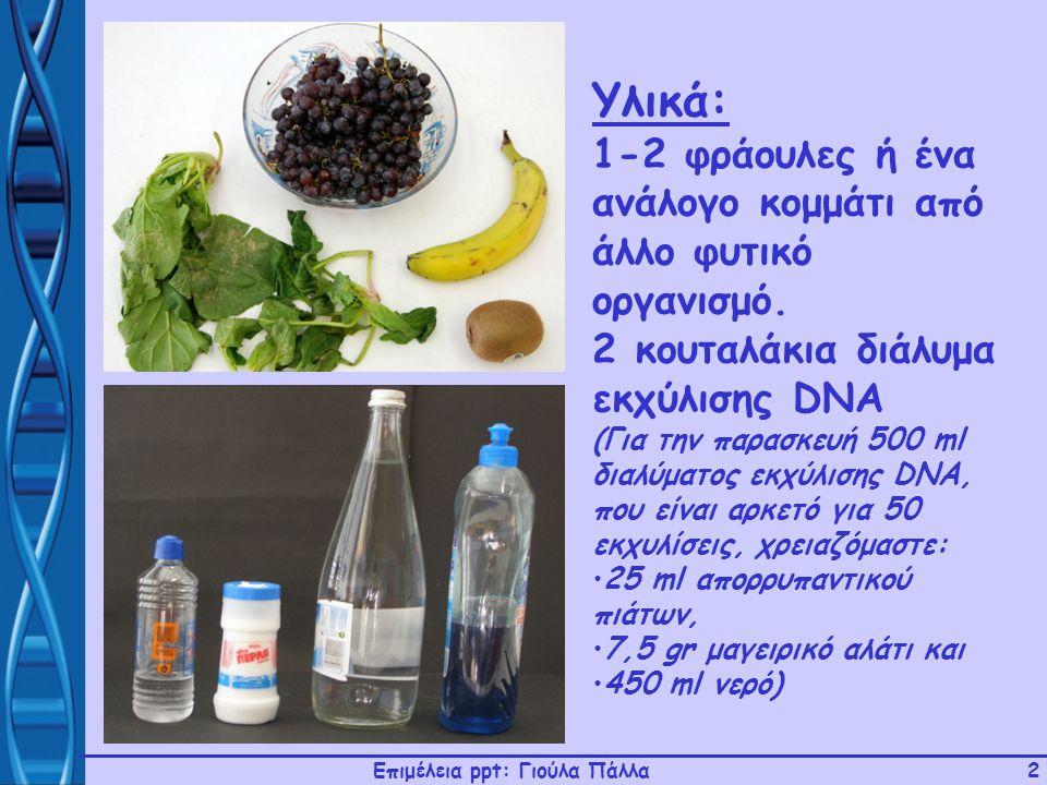 Επιμέλεια ppt: Γιούλα Πάλλα2 Υλικά: 1-2 φράουλες ή ένα ανάλογο κομμάτι από άλλο φυτικό οργανισμό. 2 κουταλάκια διάλυμα εκχύλισης DNA (Για την παρασκευ