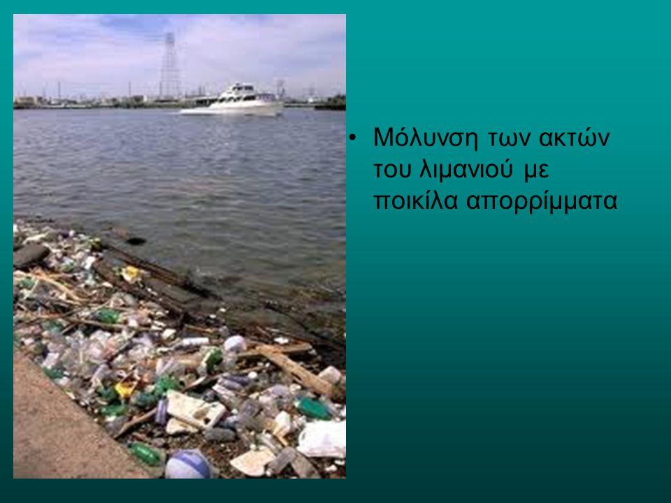 Μόλυνση των ακτών του λιμανιού με ποικίλα απορρίμματα