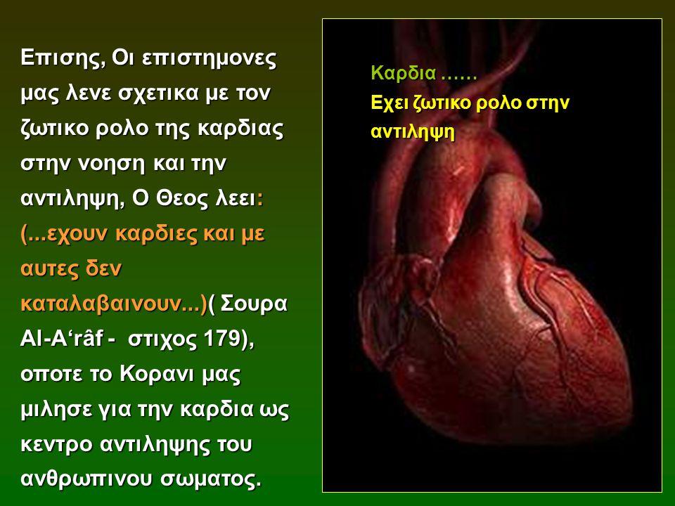 Επισης, Οι επιστημονες μας λενε σχετικα με τον ζωτικο ρολο της καρδιας στην νοηση και την αντιληψη, Ο Θεος λεει: (...εχουν καρδιες και με αυτες δεν κα