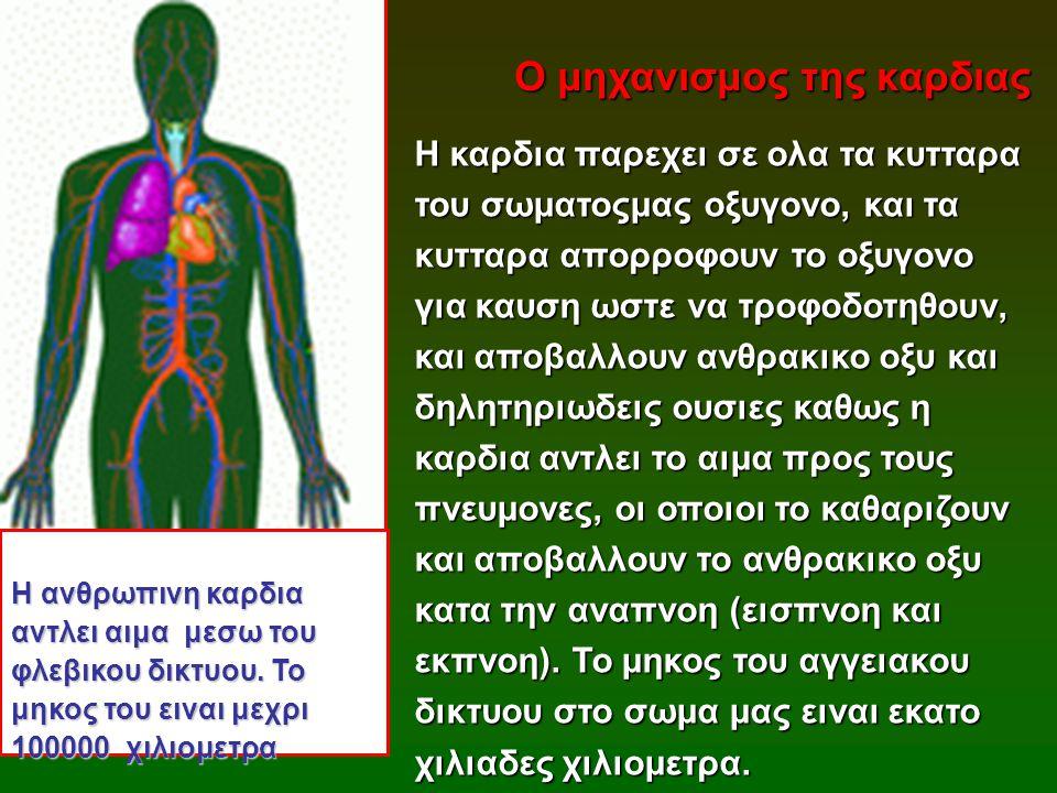 Η καρδια παρεχει σε ολα τα κυτταρα του σωματοςμας οξυγονο, και τα κυτταρα απορροφουν το οξυγονο για καυση ωστε να τροφοδοτηθουν, και αποβαλλουν ανθρακ