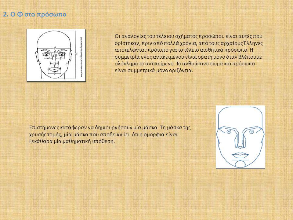 2. Ο Φ στο πρόσωπο Οι αναλογίες του τέλειου σχήματος προσώπου είναι αυτές που ορίστηκαν, πριν από πολλά χρόνια, από τους αρχαίους Έλληνες αποτελώντας