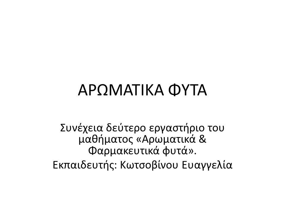 ΑΡΩΜΑΤΙΚΑ ΦΥΤΑ Συνέχεια δεύτερο εργαστήριο του μαθήματος «Αρωματικά & Φαρμακευτικά φυτά».