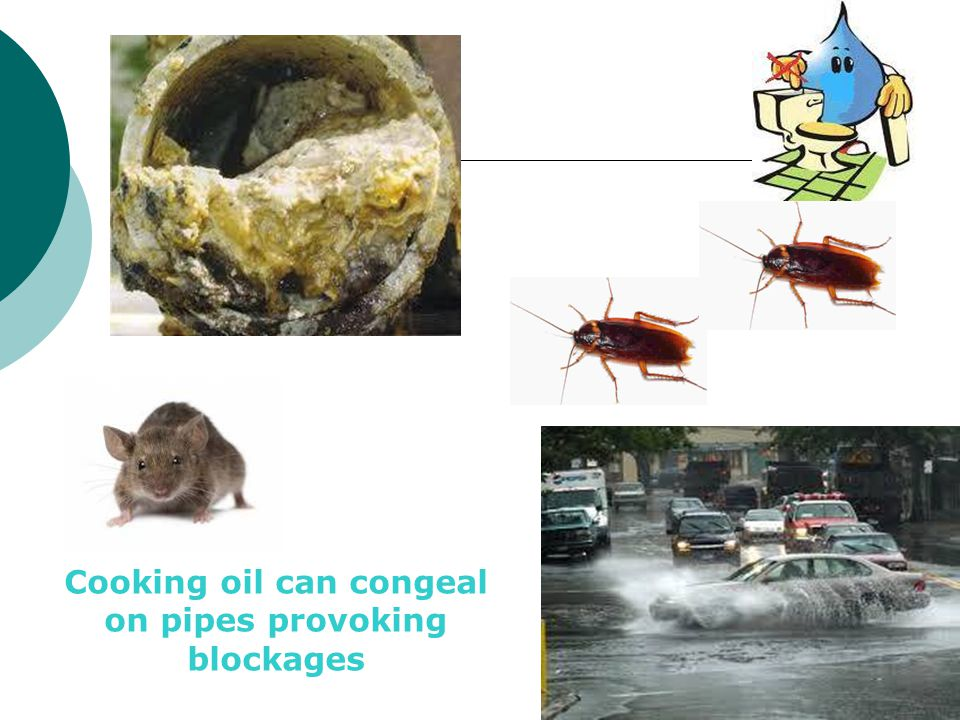 Cooking oil can congeal on pipes provoking blockages