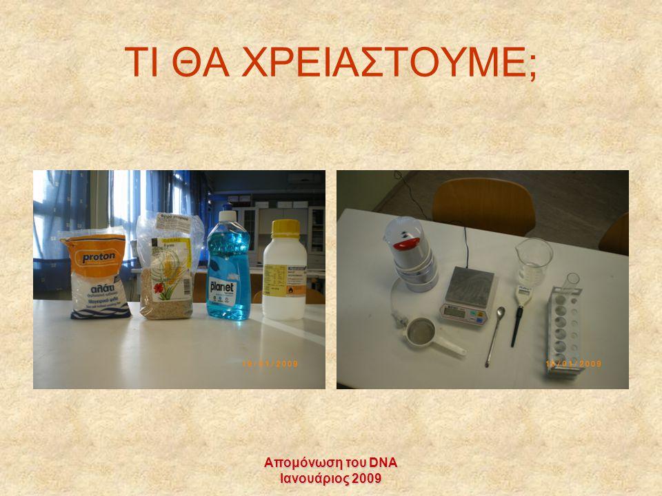 Απομόνωση του DNA Ιανουάριος 2009 ΤΙ ΘΑ ΧΡΕΙΑΣΤΟΥΜΕ;