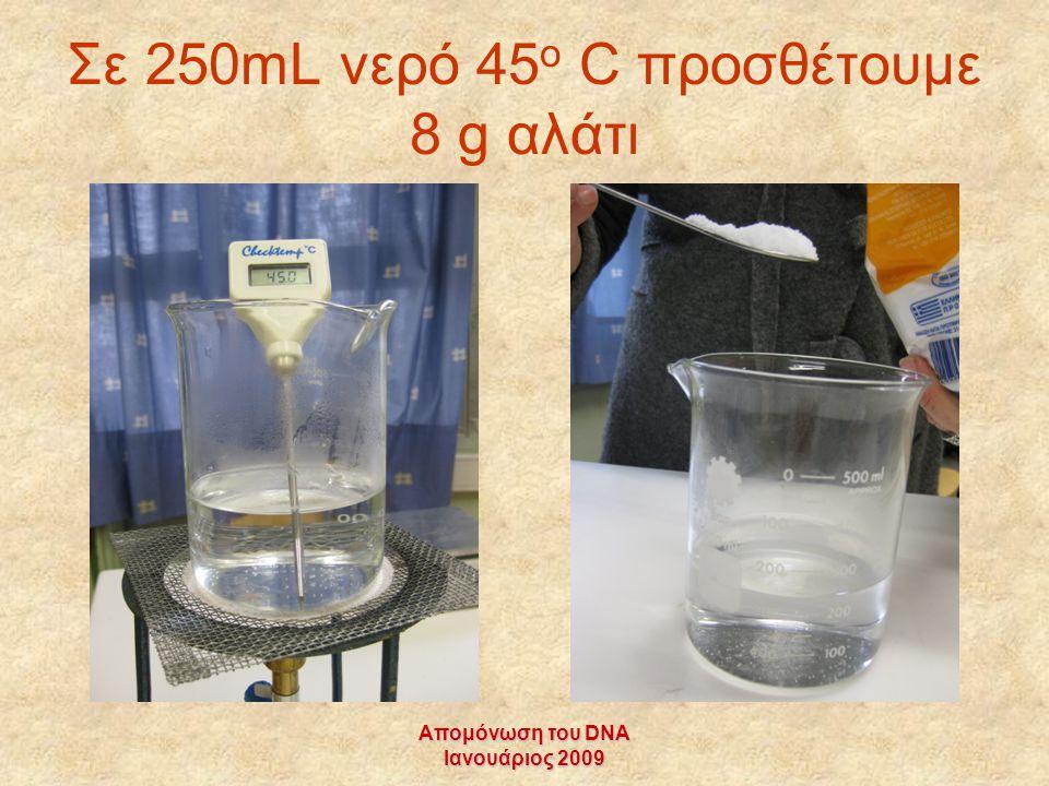 Απομόνωση του DNA Ιανουάριος 2009 Σε 250mL νερό 45 ο C προσθέτουμε 8 g αλάτι